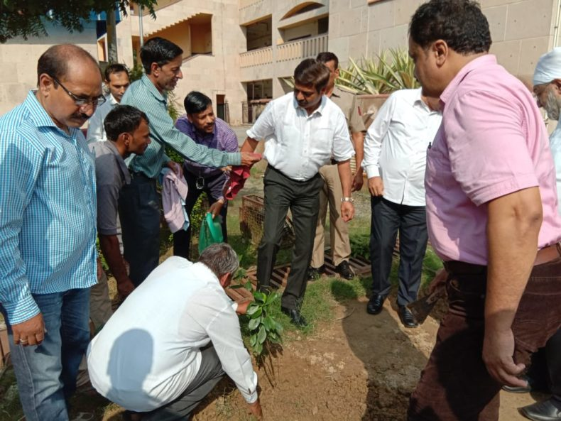 Plantation of trees at Rohini Court Complex, New Delhi on 11.09.2018, Ld. Judicial Officer posted at Rohini Courts, Delhi planted trees in the benign presence of Shri Rajnish Bhatnagar, Ld. District & Sessions Judge, North West District, Delhi