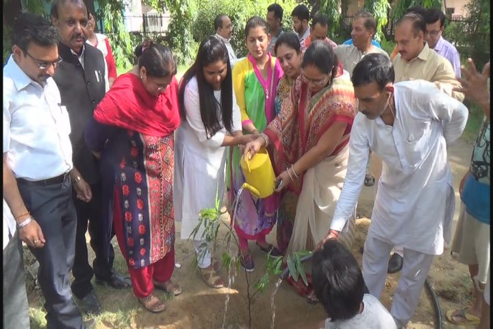 "Organised an awareness programme to mark ""World Environment Day"""