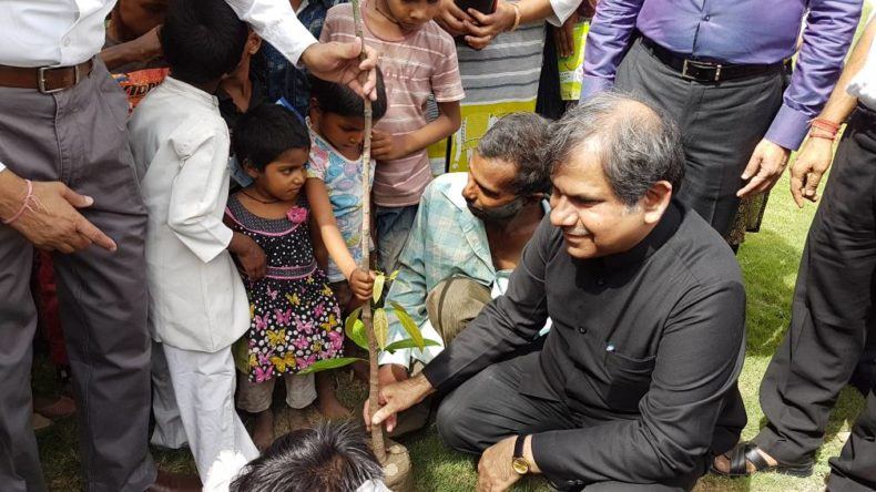 Tree plantation on the occasion of World Environment Day  i.e. 05.06.2017